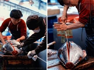 tsukiji_2009_diptych
