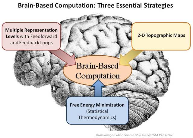 Three major strategies used by the brain include multiple representation layers, 2-D topographic grids, and free energy minimization (statistical mechanics).