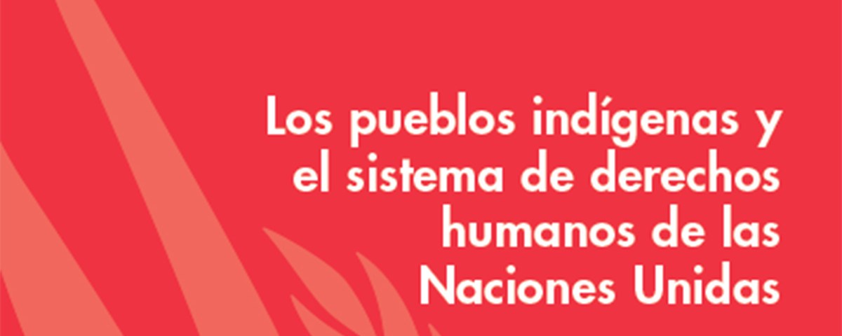 lospueglosindigenas-nacionesunidas-grande