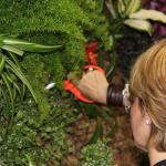 Éxito de la Jornada de Formación de Jardines Verticales
