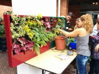 curso jardines verticales bogotá colombia formación