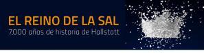 Exhibition Kingdom of Salt. 7000 years of Hallstatt @ MARQ