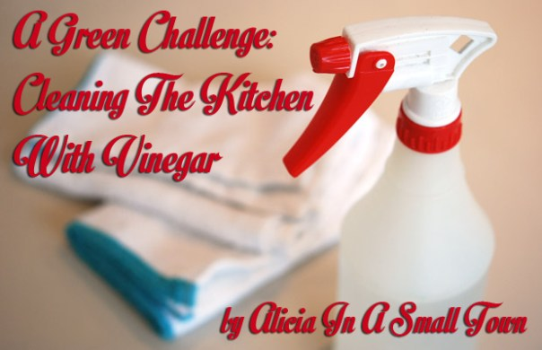 Cleaning The Kitchen With Vinegar copy