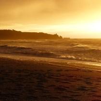 Rain, rain…go away! (New Zealand Part 3: West Coast, Kaikoura and Wellington)