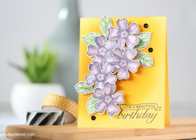 Stampin Up! Birthday Blossoms