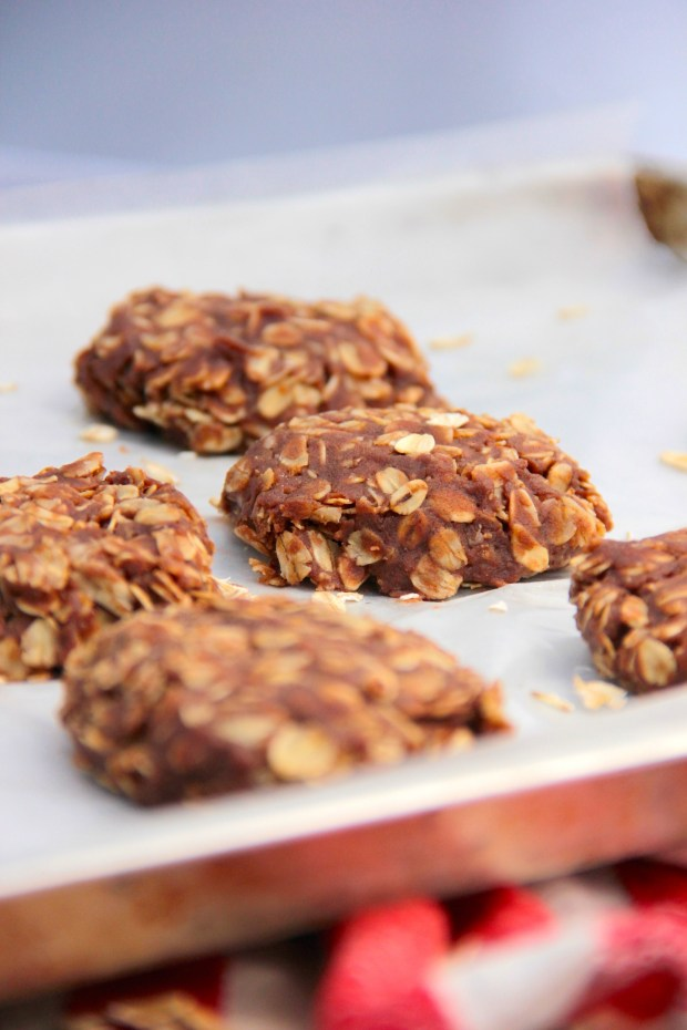 Protein Packed Chocolate Almond No-Bakes