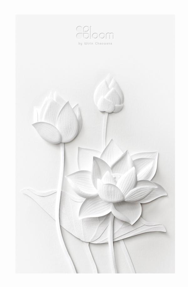 white paper flowers by wirin chaowana