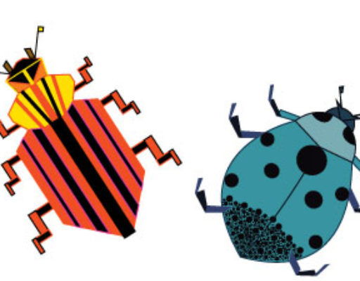 cropped-bugs-color.jpg