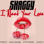 Shaggy-I-Need-Your-Love-news