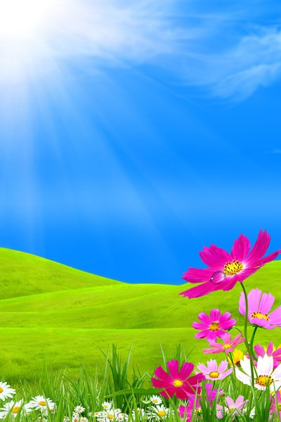 Spring View iPhone Wallpaper HD