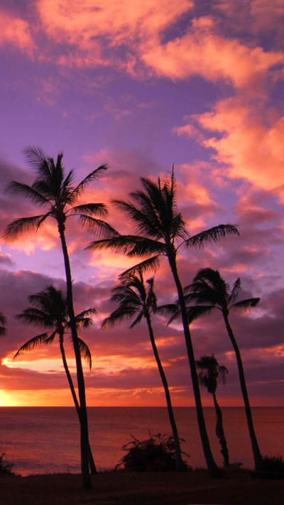 Hawaii Sunset iPhone Wallpaper HD