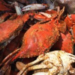 The official start of summer. Cracking crabs at The River.…