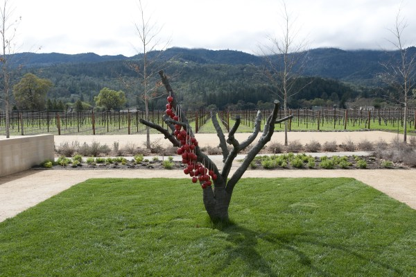 Art at Wine and Art Exploration Tour at HALL Wines (Photo Courtesy of HALL Wines)