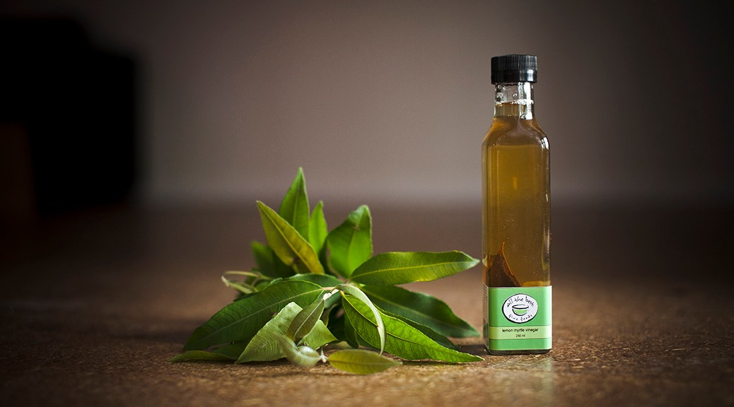 lemon myrtle vinegar2014