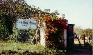 The entrance to the Peace Corps Training Centre in Naivasha, Kenya.