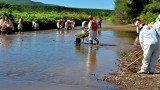 Se han ejercido 512 mdp por derrame tóxico en Sonora