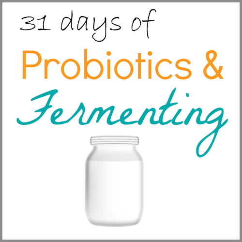 31 Days of Probiotics and Fermenting, index