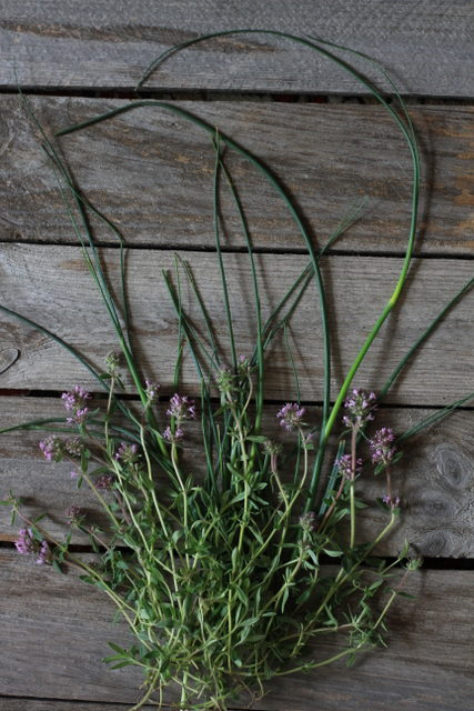 Wild onions and thyme - Almost Bananas