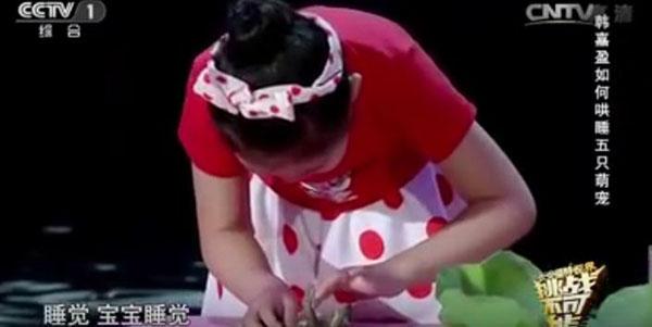طفلة صينية تجبر الحيوانات على النوم مغناطيسيًا