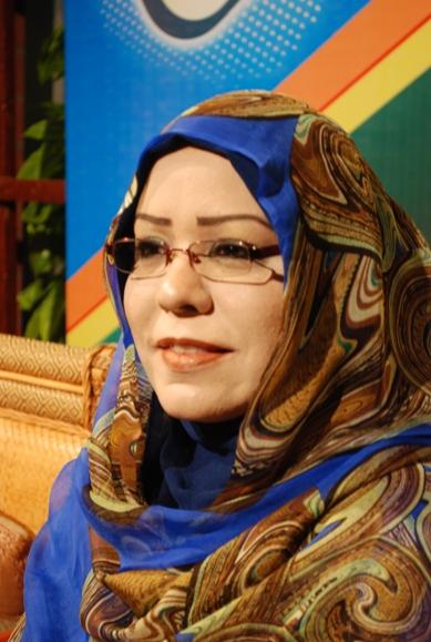 إيناس محمد أحمد