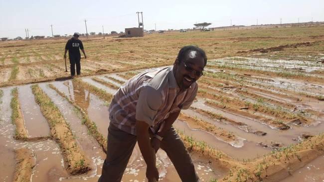 الكاتب الكبير مزمل أبو القاسم يتحول من صحفي لمزارع ناجح