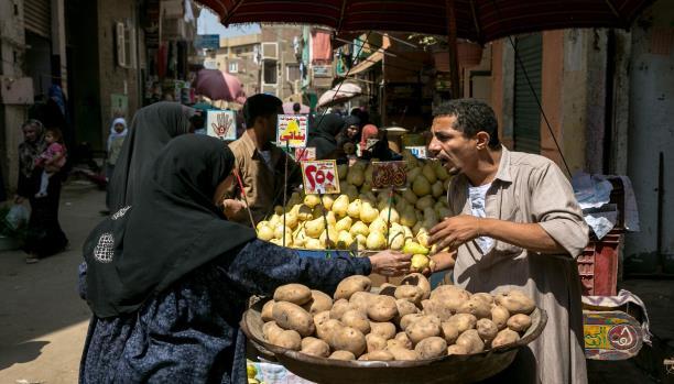 مصر - المصر - القاهرة
