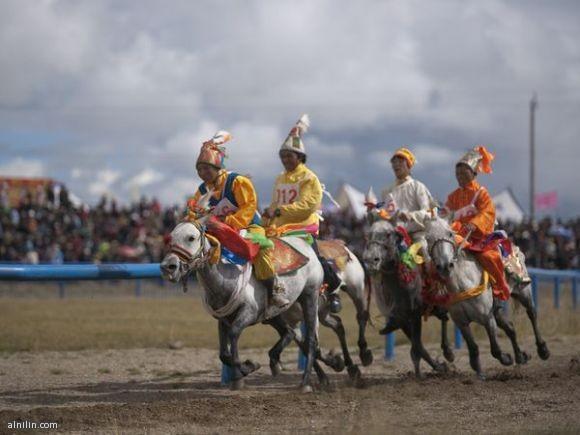 سباق طويل للسرعة والتحمل - ناقتشو مهرجان الخيل - التبت