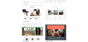 Premium_WordPress_Themes_and_Templates_from_WooThemes_-_2015-05-14_11.30.24