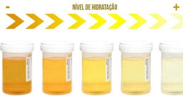 cor_cheiro_urina