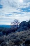 plateau calern- borie de pons (5)