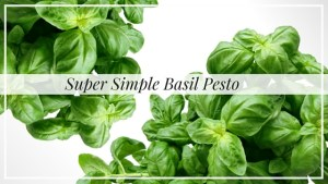 Super Simple Basil Pesto