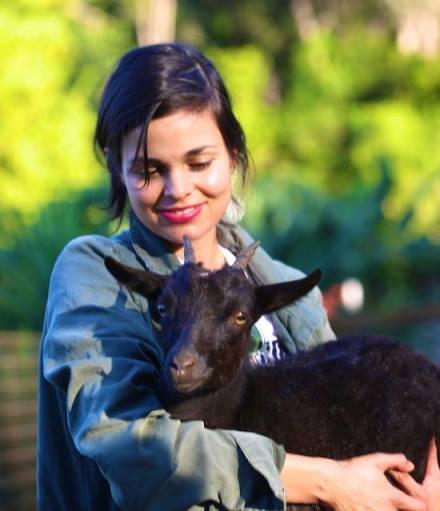 Goat at Leilani Farm Sanctuary of Maui