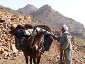 Travesía Imlil Setti Farma