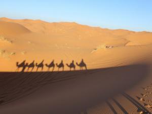 Circuito Atlas y desierto de Marruecos