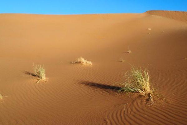erg-chegagga-gran-desierto-marruecos-1