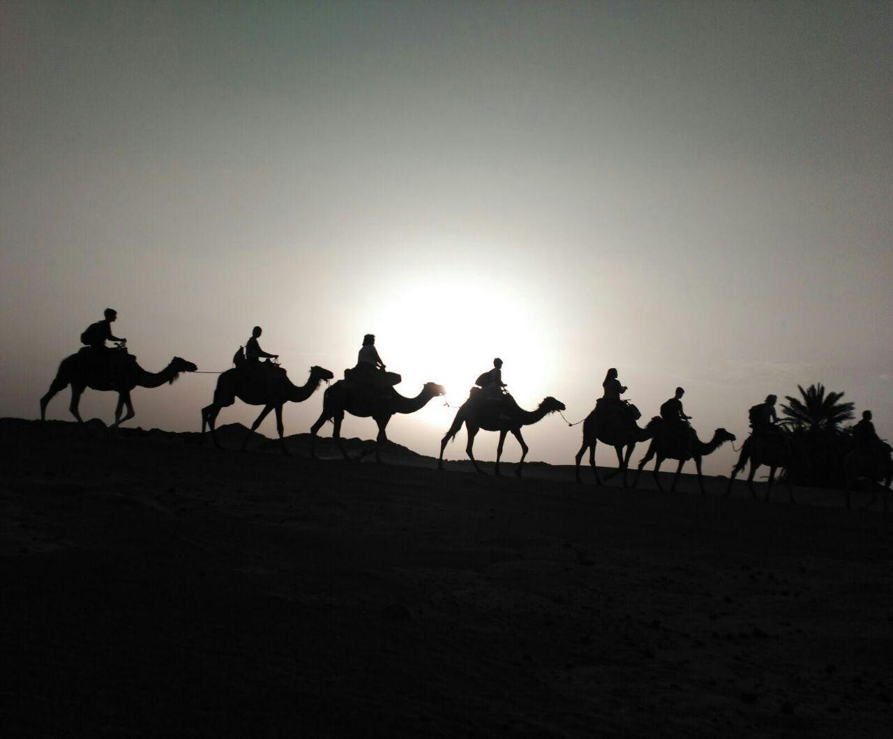 fin-de-ano-marrakech-y-desierto