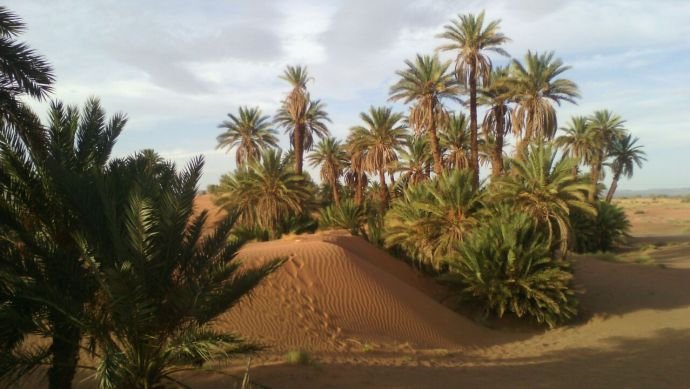 viajes-amazigh-marruecos-rutas-4x4