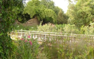 le-jardin-dolhao