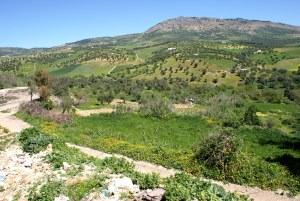 excursion-por-la-ladera-de-zalagh-viajes-amazigh-marruecos-13