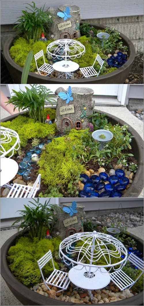 Medium Of Miniature Fairy Gardens