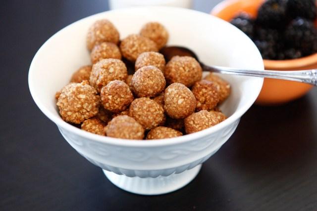 Coconut Sugar Cinnamon Puffs