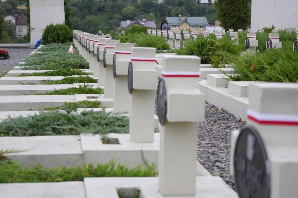 Nagrobki_na_cmentarzu_Orląt_Lwowkich_we_Lwowie