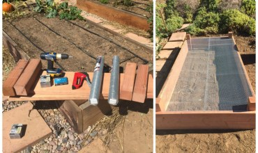 How to Build a High Quality Raised Garden Bed