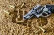 firearm- gun