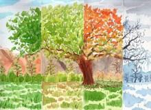 Durante todas las estaciones del año, brindamos educación ambiental.