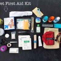 DIY Pet First Aid Kit