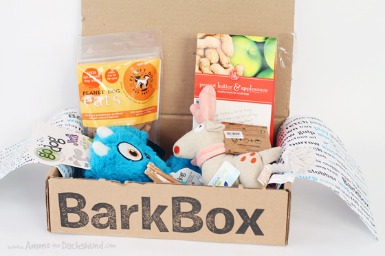 How to Spoil Your Dog BarkBox Dog Toys Treats Package Woof