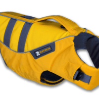 Best Fitting Lifevest for Dogs & A Giveaway
