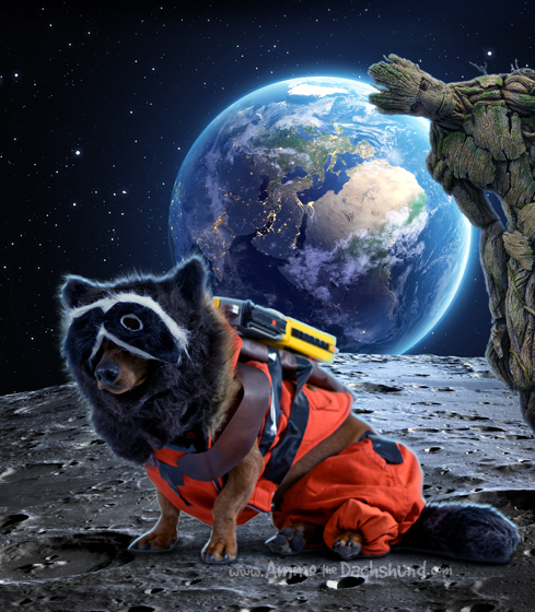 DIY Guardians of the Galaxy Halloween Costume