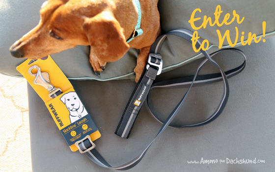 A Safe Adjustable Length Dog Leash from Ruffwear + A Giveaway